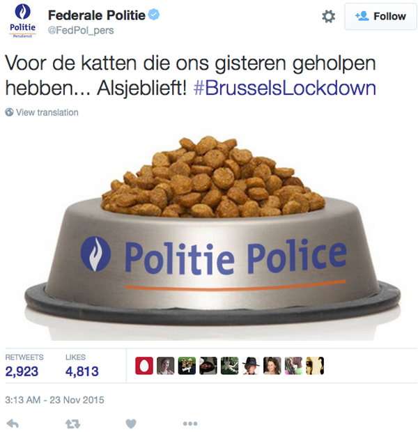 brussels-cats-police-thank-you