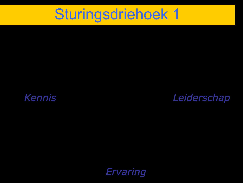 Sturingsdriehoek 1
