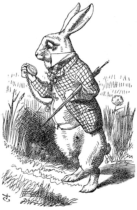 alice_rabbit1