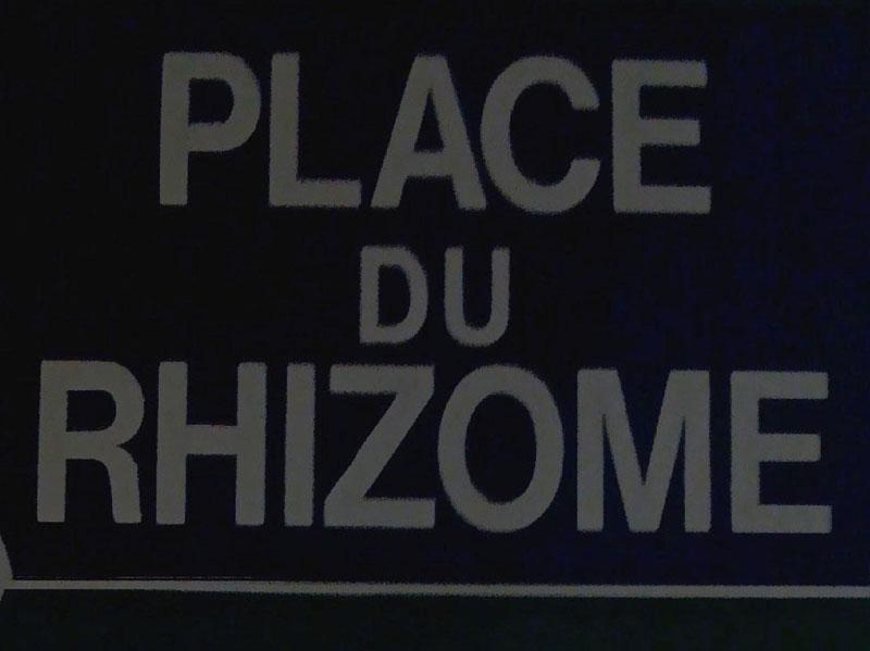 StructureRhizome_0011