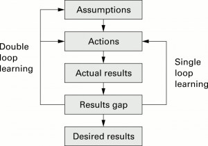 Double Loop Learning Reason