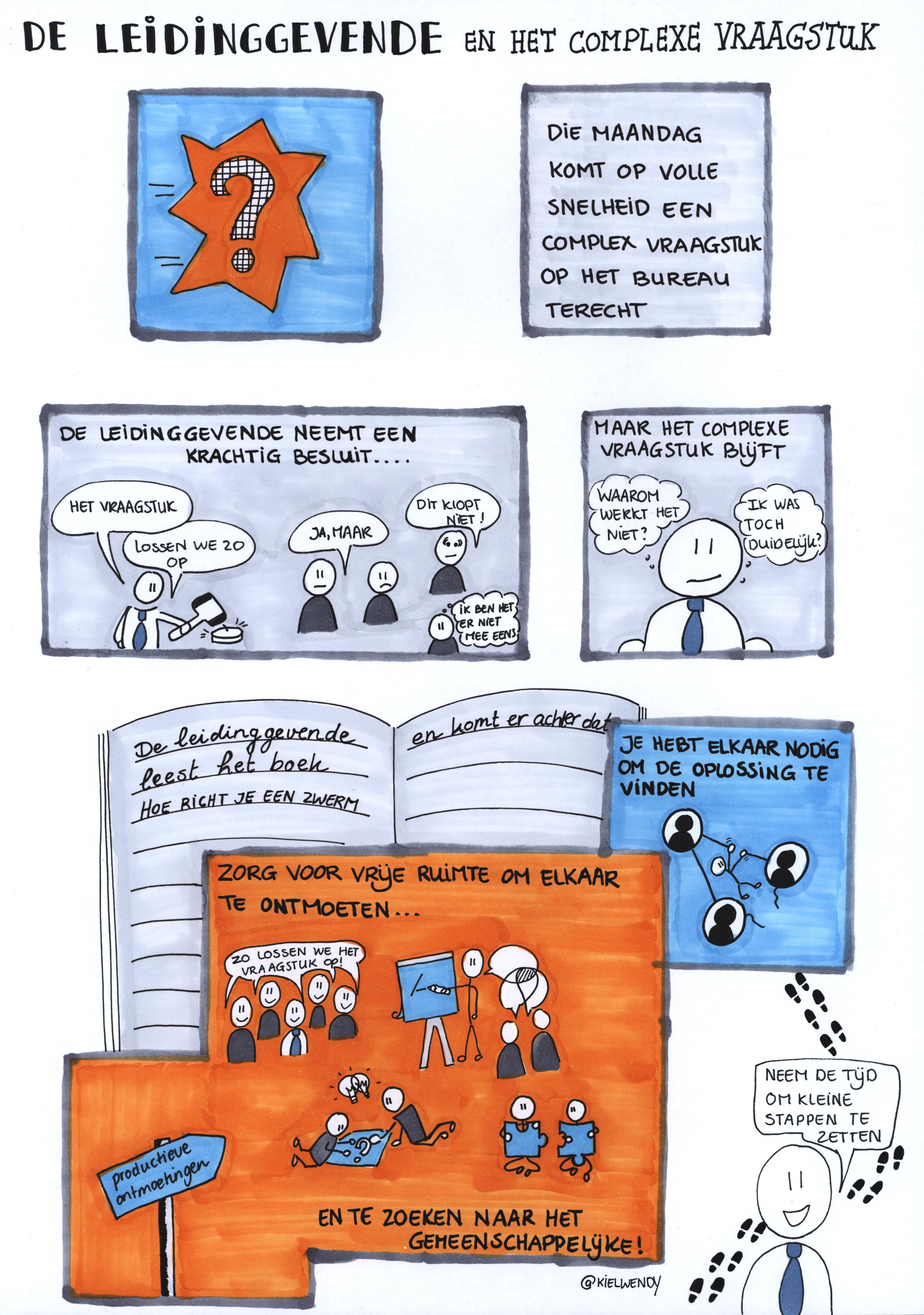 de-leidinggevende-en-het-complexe-vraagstuk